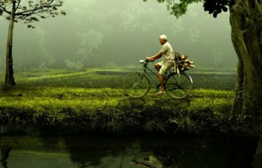 mężczyzna na rowerze, las, rzeka