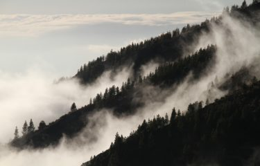mgla nad lasem